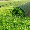 Green Artificial Grass