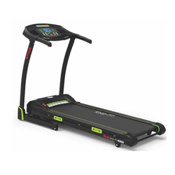 TM-224 Motorized A.C. Treadmill