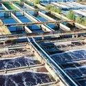 Industrial Wastewater Treatment Effective Microorganism Culture