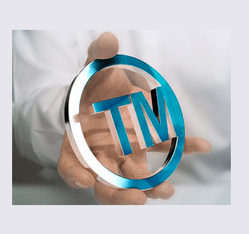 Trademark Renewal Services