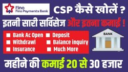 Micro Automated Teller Machine Individual Consultant Fino Payment Bank Csp, Banking