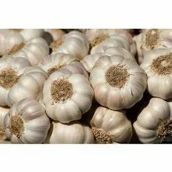 A Grade Fresh Garlic, Packaging Size: 20 And 50 Kgs