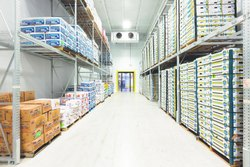 Walnut Cold Storage Rental Services