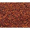 Red Gram Seeds, For Agriculture, Pack Size: 1 - 40 Kg