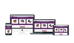 Website Development, With Online Support