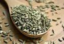 Fennal Seed