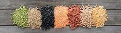 Fresh Harvest Indian Pulse