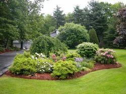 Gardening Landscape Dealers