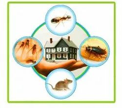 Commercial Chemical based Outdoor Pest Control in Ahmedabad
