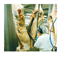 Food Processing Industry Blades