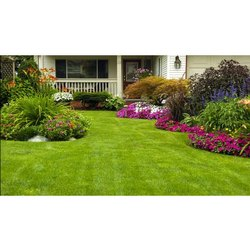 Front Yard Home/Residence Garden Landscaping Service