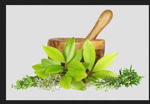 Certified Organic Herbs Powder, जड़ी बूटी का चूर्ण in Dattatreya Nagar,  Hyderabad , Stiriti Ayur Therapies Pvt. Ltd | ID: 20979828991