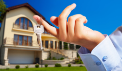 Offsite Real Estate Consultancy Services