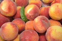 Irani Peach
