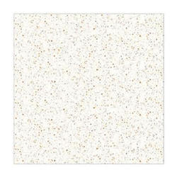 White Sand Countertop Granite Slab