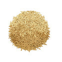 Pusa Basmati 1509 Variety Rice / Paddy Seeds