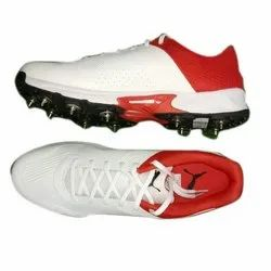 Puma Cricket Spikes Shoes, Size: 6 To
