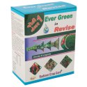 Evergreen Revise Virucide Fungicide