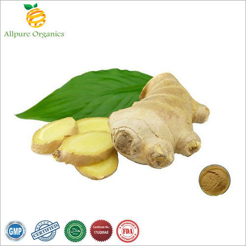 Allpure Organics Ginger Root Extract