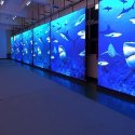 Outdoor High Brightness Flexible Transparent LED Mesh Screen Waterproof