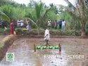 Paddy Rice Seeder