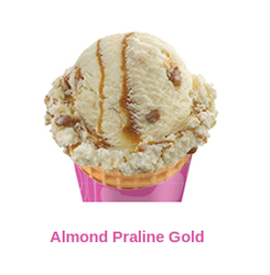 Almond Praline Gold Ice Cream