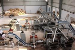 Automatic Cashew Processing Machinery