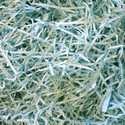 Shredded Paper for Hampers