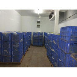 Freezer Room Rental Service