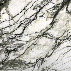 Amazon White Marble