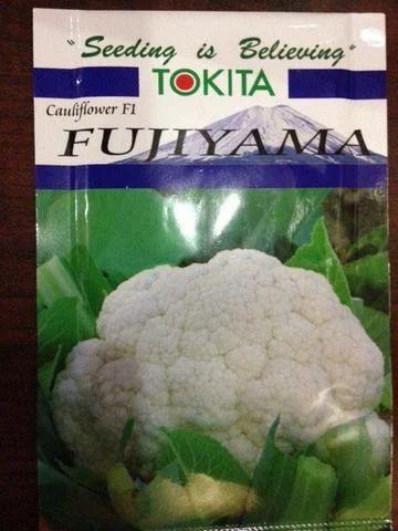 Tokita fujiyama cauliflower seeds ( seeds ), for Farming