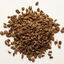 Ajwain Seeds Carrom Seeds