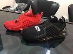 368569dce6d3 Men Puma Ignite Shoes