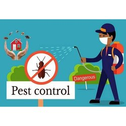 Chemical Based Commercial Insect Pest Control Services