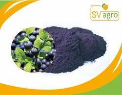 Anthocyanidin 25% Bil Berry Fruit Extract