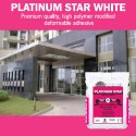Ardex Endura Platinum Star (white), Packaging Size: 20 Kg, 2kg, Packaging Type: Packet