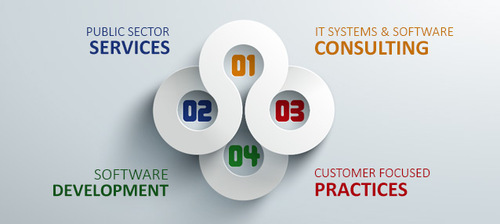 IT Software Consulting