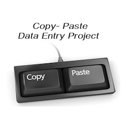Online Project Data Entry