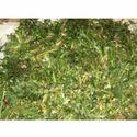 Green Agriculture Shredder