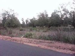 800 Acres Land For Sale Rs:15,000,00/- Per Acre Visakhapatnam District Nakkapalli Mandal