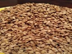 PR Sesame Seeds, Packaging Size: 50 Kg, Packaging Type: Plastic Bag