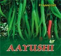 Sbpl Aayushi F-1 Hybrid Chilli Seed, Pack Size: 10 Gm
