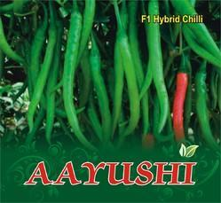 Aayushi F-1 Hybrid Chilli Seed
