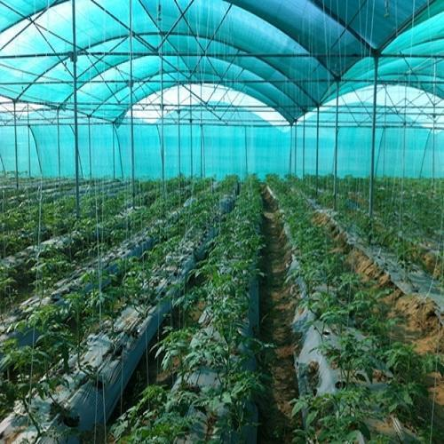 Greenhouse Accessories - Aluminum Profile- for Greenhouse