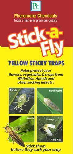 PC Plastic Pheromone Chemicals Yellow Sticky Insect Trap