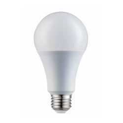 Round AC LED Bulb