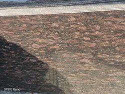 Polished Brazil Brown Granite Slab, Flooring, Thickness: 15-20 mm