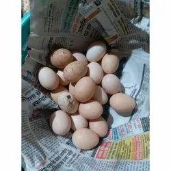 德西棕色鸡蛋,包装类型:托盘盒