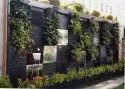 Green Wall Garden