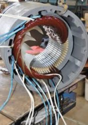 Rewinding Of Lt Motors Of Various Sizes And Capacities